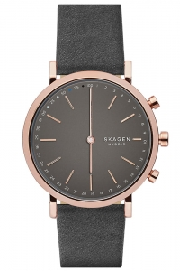 Smartwatch SKAGEN Hald Connected Leather Hybrid SKT1207